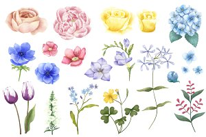 Illustration of hand painted flowers