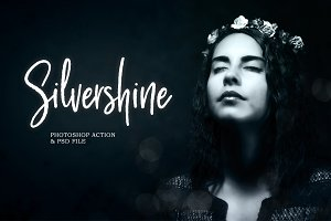 Silvershine Photoshop Action