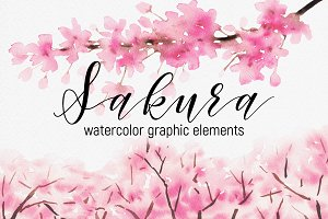 Sakura – watercolor graphic elements