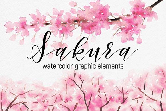 Sakura Watercolor Graphic Elements