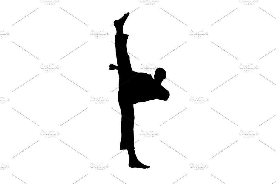 silhouette martial arts high kick ~ Illustrations