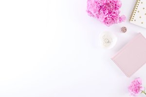 Styled photo - carnation flowers