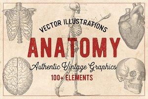 100 Vintage Anatomy Vectors