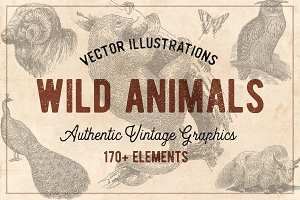 176 Vintage Wild Animals (Vector)