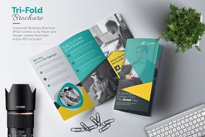 Tri-Fold Multipurpose Brochure