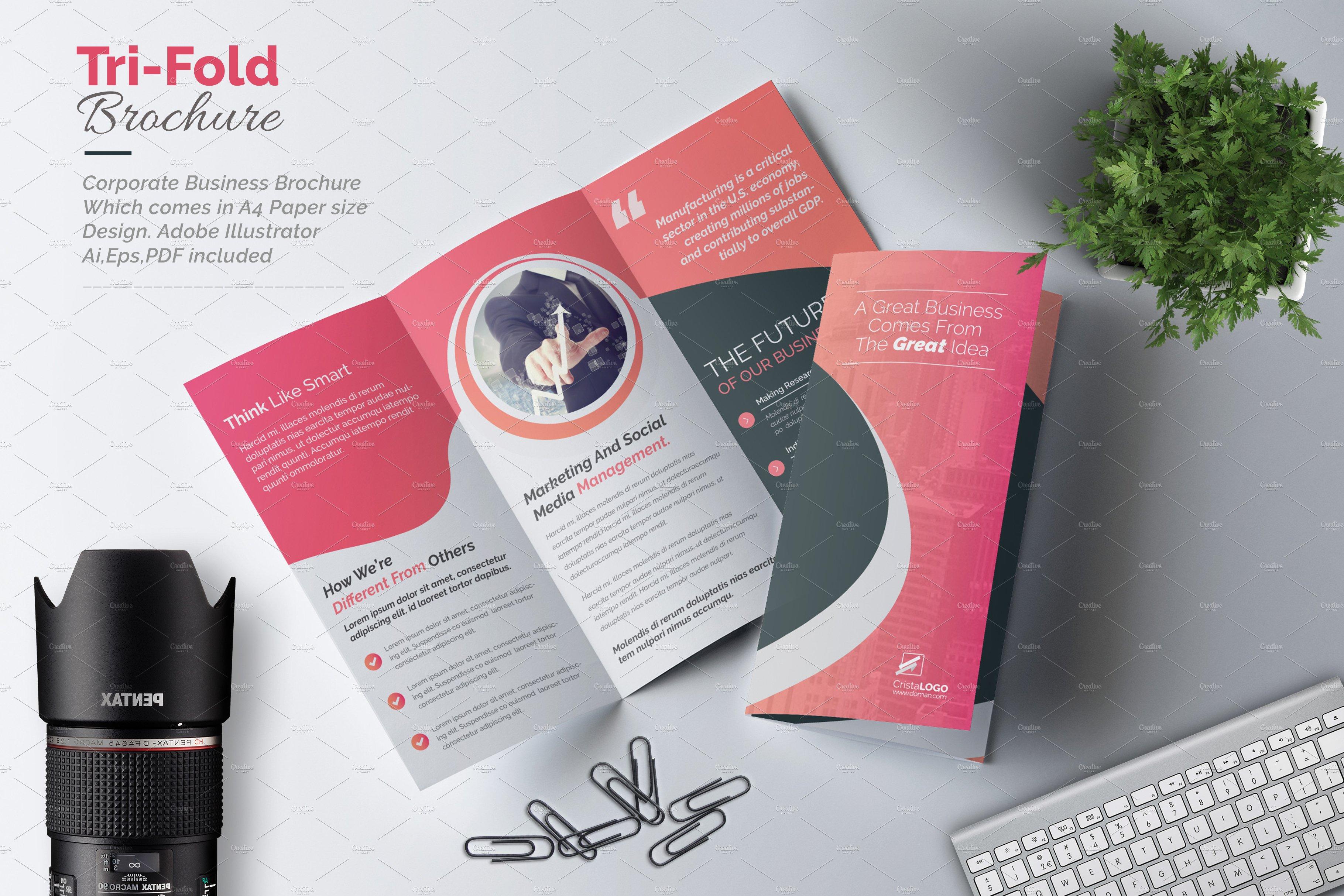 tri fold brochure brochure templates creative market