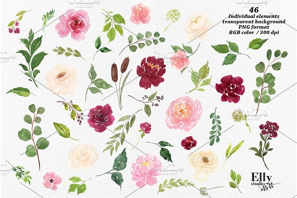 Watercolor Flower Graphic Set Illustrations Creative Market