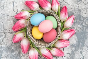 Easter eggs and tulip flowers