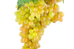 Bunch of sweet grapes