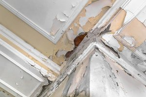 Ceiling and walls damage by humidity