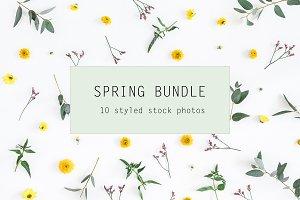 Spring bundle 2