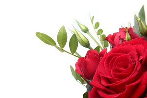 Luxury bouquet made of red roses.