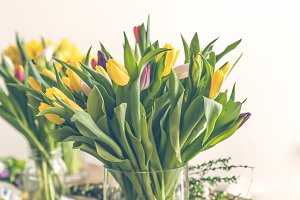 Multicolored tulips flowers bouquet