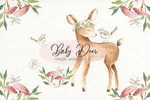 Baby Deer I - Watercolor Set