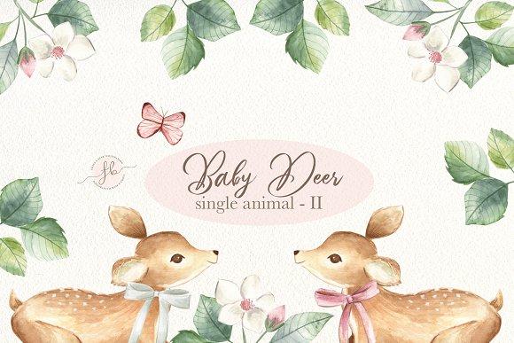 Baby Deer II Watercolor Set