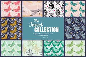 The Insect collection