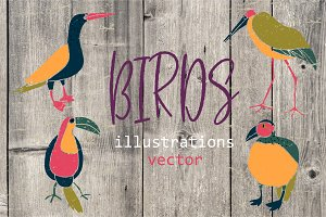 Birds - hand drawn clipart