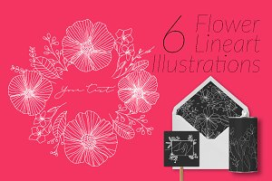 6 Flower Lineart Illustrations