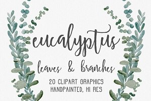 Eucalyptus Greenery Clipart Graphics