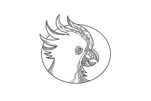 Cockatoo Head Circle Doodle Art
