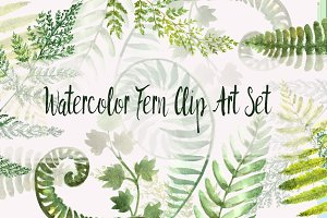 Watercolor Fern Clip Art Set