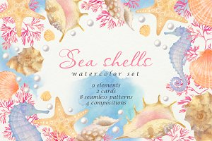 Sea Shells: watercolor set