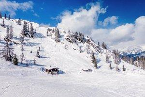 Skiing Wintertime