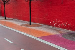 Red Wall, Trees and Bike Lane