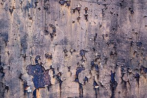 texture of rusty iron, full image