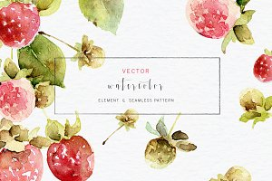 Watercolor vector set with raspberry