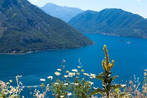 Coastline of the Boka-Kotor Bay