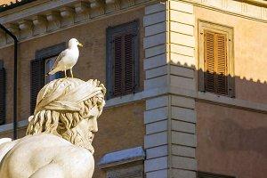 Seagull over a statue head