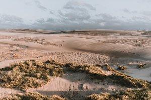 Dune Landscape in Sunset Colors
