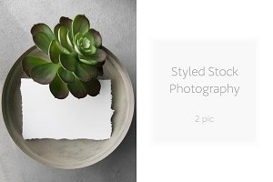 Styled stock photography - 2 pic