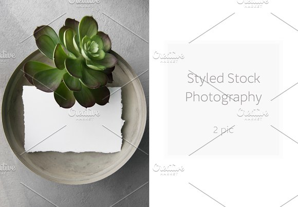 Styled Stock Photography 2 Pic