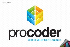 Professional Developer Logo