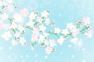 Spring branch card