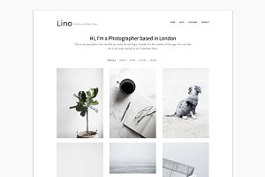 Portfolio WordPress Theme - Lino