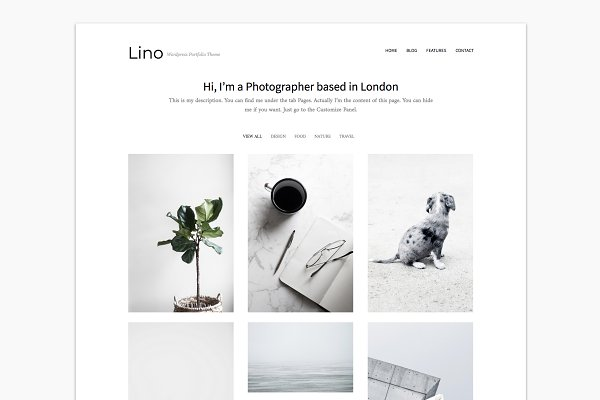 WordPress Portfolio Themes: PanKogut - Portfolio WordPress Theme - Lino