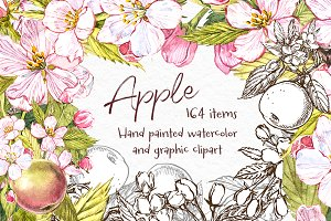 Apple.Graphic & Watercolor clipart