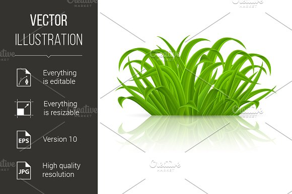 Green Grass in Graphics