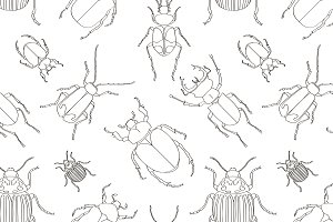 Set of beetle illustrations pattern
