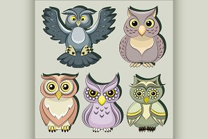 Set of color owls