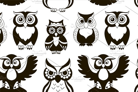 Pattern of owls