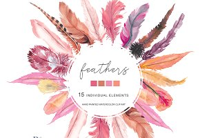 Watercolor Blush  Feather Clip Art