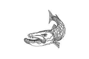 Barracuda Fish Doodle Art