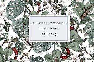 Illustrative Tropical