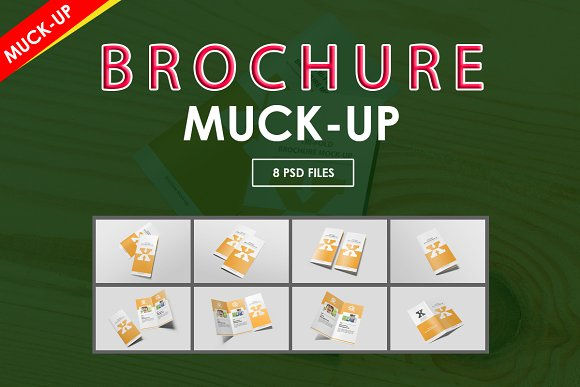 Brochure-Mock-Ups