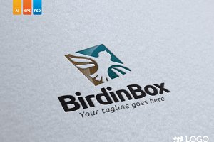 Bird in Box