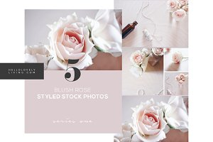 Blush Rose Styled Photos - Series 1